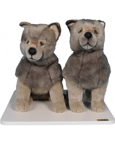 TWO GREY CUBS