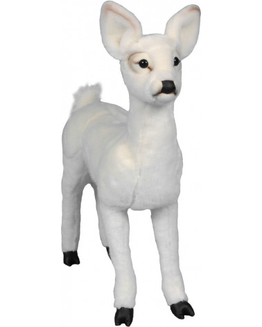 Standing white fawn